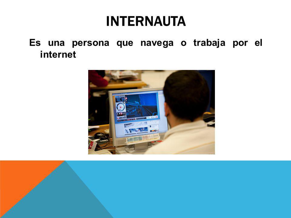INTERNAUTA Es una persona que navega o trabaja por el internet