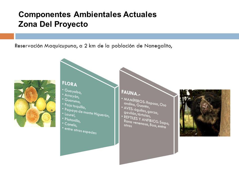 Componentes Ambientales Actuales Zona Del Proyecto Reservación Maquicupuna, a 2 km de la población de Nanegalito,