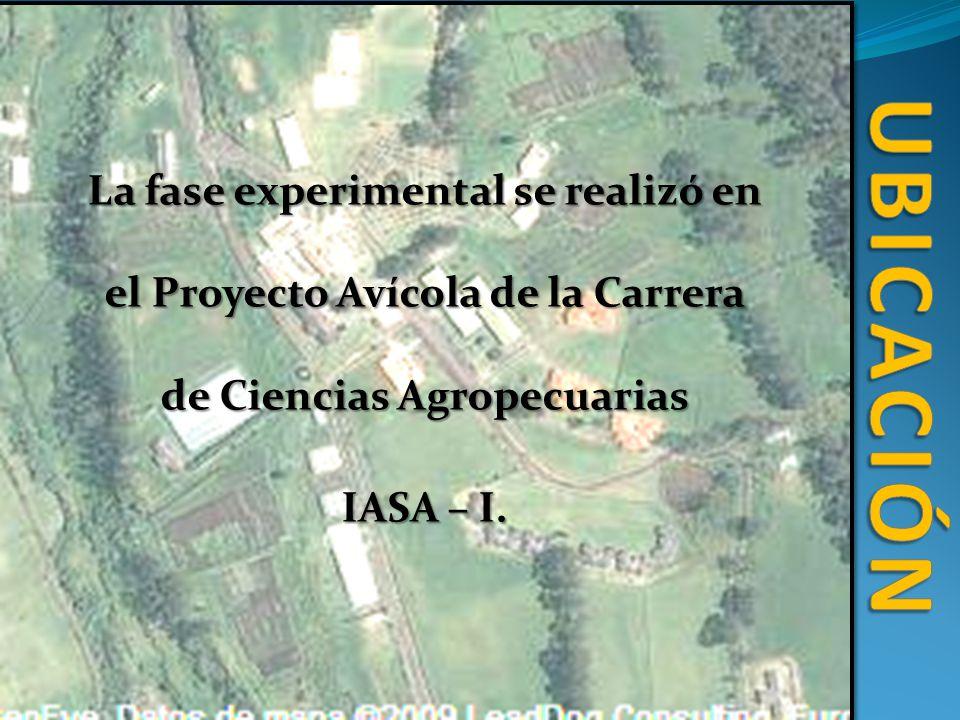 La fase experimental se realizó en el Proyecto Avícola de la Carrera de Ciencias Agropecuarias IASA – I.