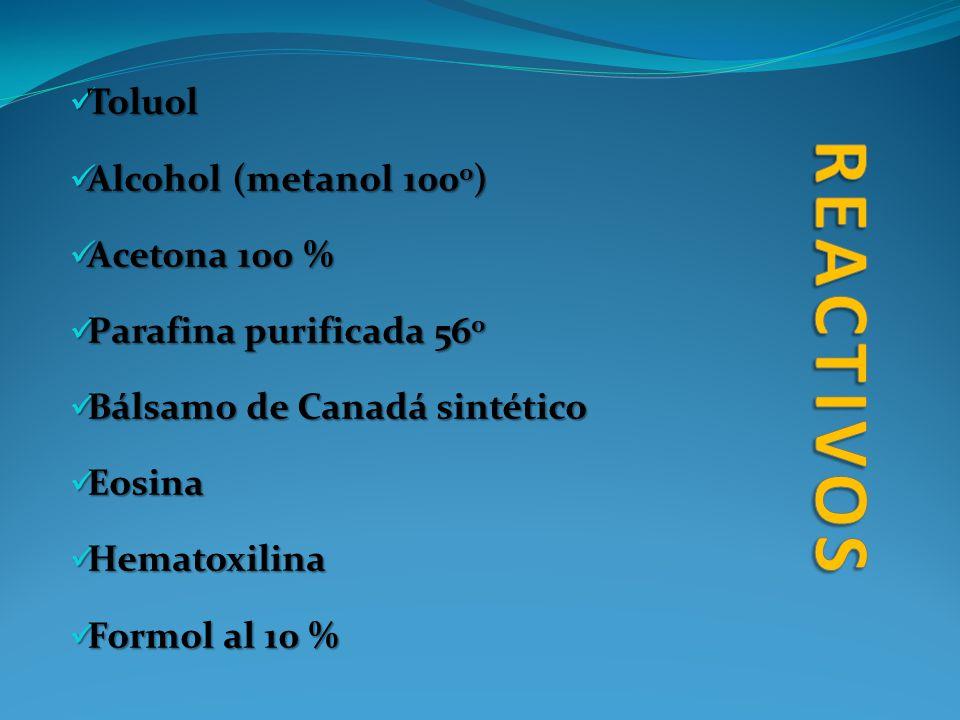 Toluol Toluol Alcohol (metanol 100 0 ) Alcohol (metanol 100 0 ) Acetona 100 % Acetona 100 % Parafina purificada 56 0 Parafina purificada 56 0 Bálsamo