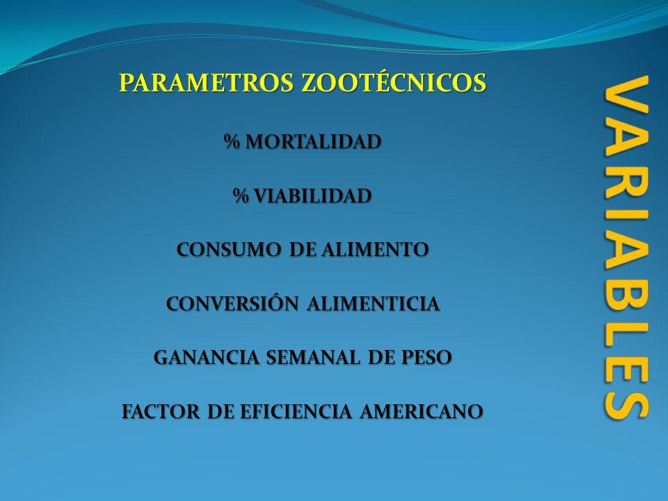 PARAMETROS ZOOTÉCNICOS % MORTALIDAD % VIABILIDAD CONSUMO DE ALIMENTO CONVERSIÓN ALIMENTICIA GANANCIA SEMANAL DE PESO FACTOR DE EFICIENCIA AMERICANO