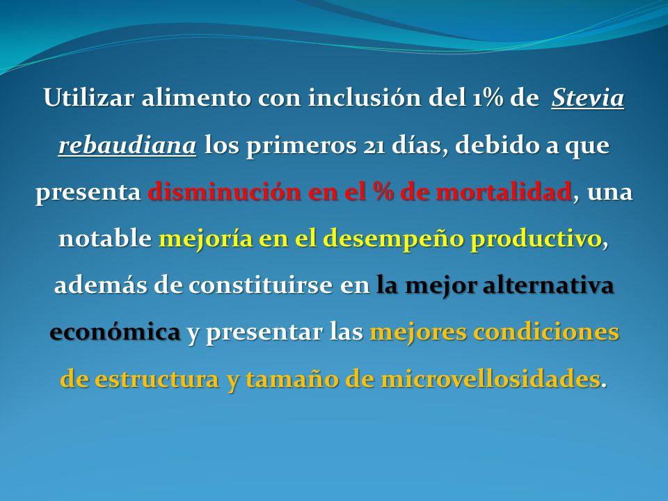 Utilizar alimento con inclusión del 1% de Stevia rebaudiana los primeros 21 días, debido a que presenta disminución en el % de mortalidad, una notable
