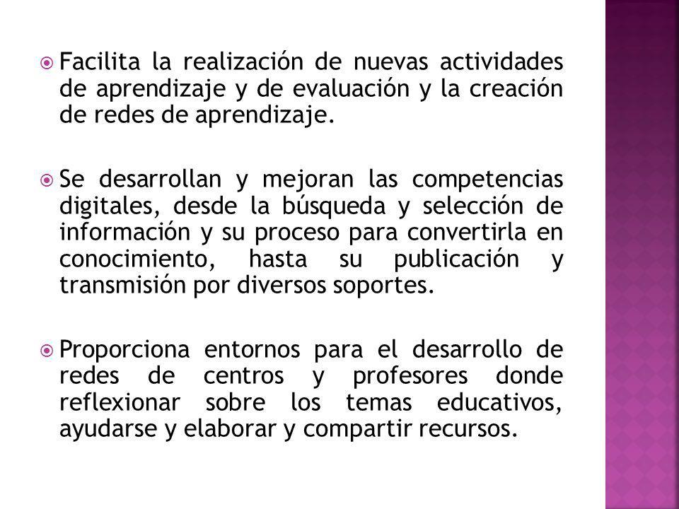 Facilita la realización de nuevas actividades de aprendizaje y de evaluación y la creación de redes de aprendizaje.