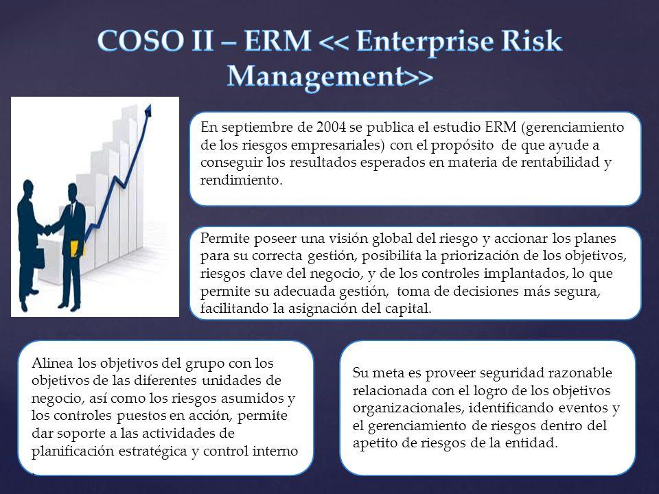 En septiembre de 2004 se publica el estudio ERM (gerenciamiento de los riesgos empresariales) con el propósito de que ayude a conseguir los resultados