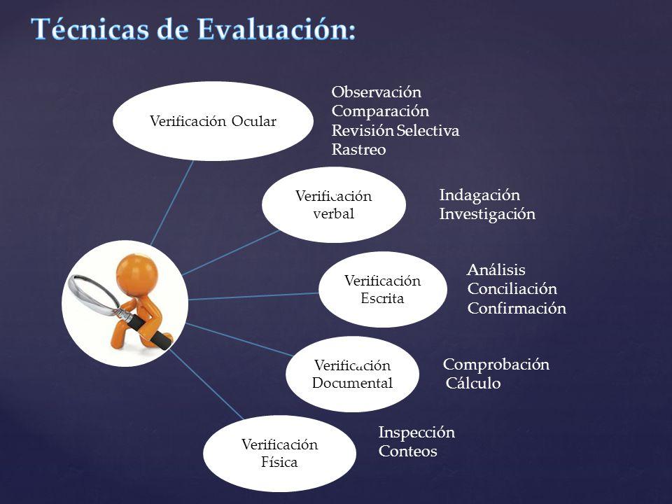Verificación Ocular Observación Comparación Revisión Selectiva Rastreo Verificación verbal Indagación Investigación Verificación Escrita Análisis Conc