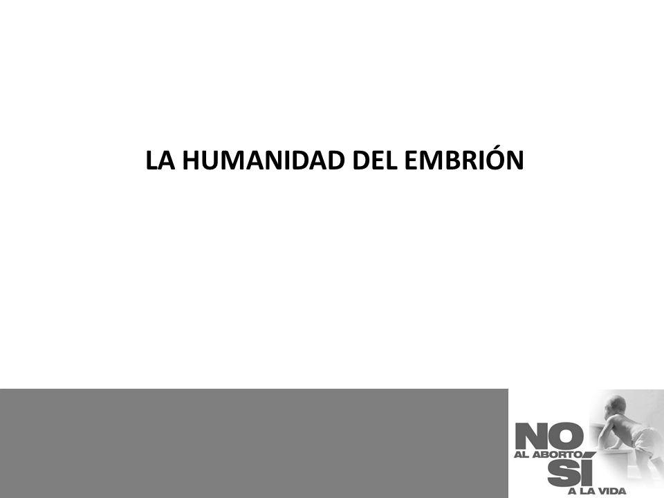 LA HUMANIDAD DEL EMBRIÓN