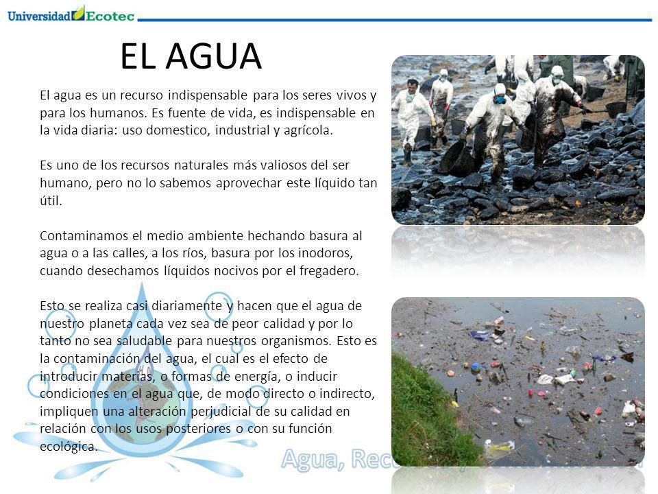 El agua es un recurso indispensable para los seres vivos y para los humanos.