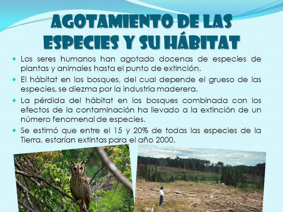 AGOTAMIENTO DE LAS ESPECIES Y SU HÁBITAT Los seres humanos han agotado docenas de especies de plantas y animales hasta el punto de extinción.