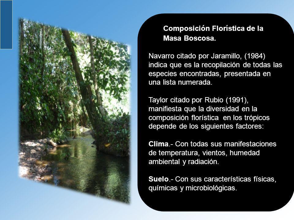 Composición Florística de la Masa Boscosa. Navarro citado por Jaramillo, (1984) indica que es la recopilación de todas las especies encontradas, prese