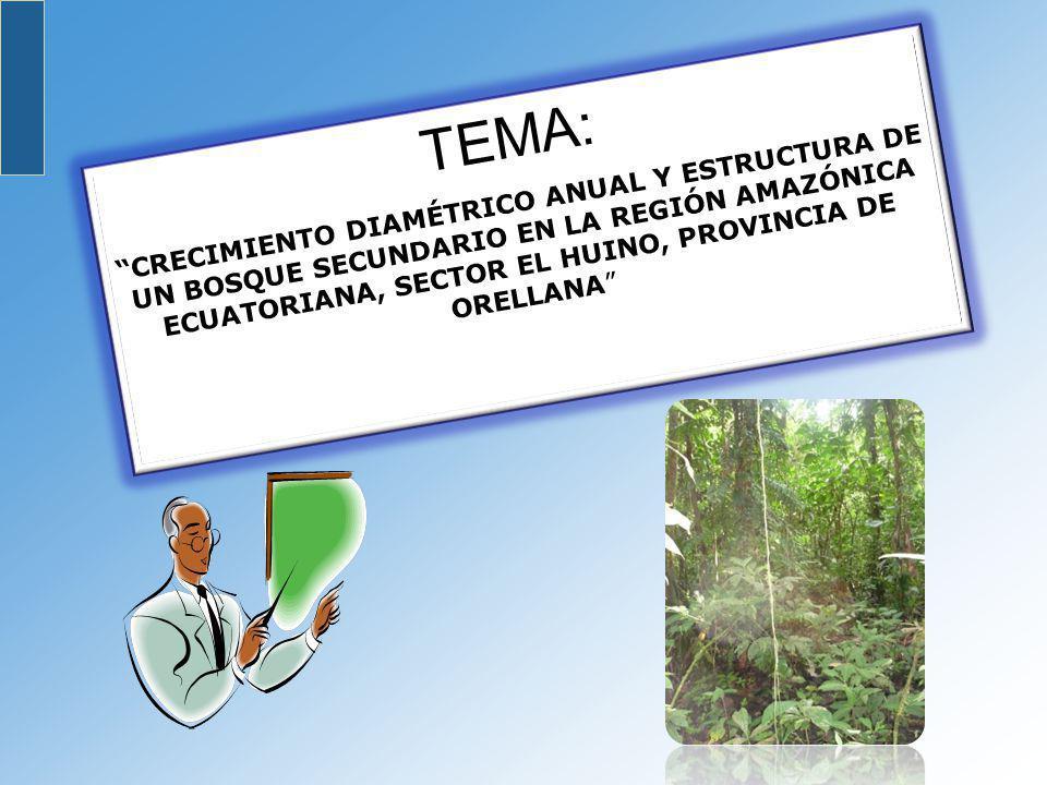 Se recomienda establecer parcelas permanentes de medición y continuar con este tipo de investigaciones en los bosques secundarios a fin de comparar los resultados obtenidos, ya que la información recolectada nos permitirá tomar las mejores decisiones en las prácticas silviculturales.