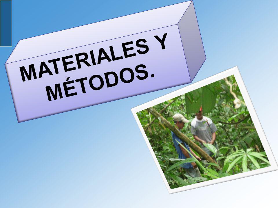 MATERIALES Y MÉTODOS.