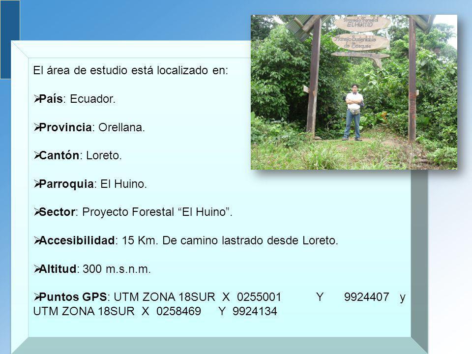 El área de estudio está localizado en: País: Ecuador. Provincia: Orellana. Cantón: Loreto. Parroquia: El Huino. Sector: Proyecto Forestal El Huino. Ac