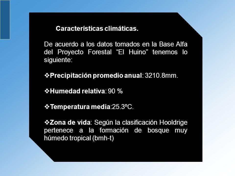 Características climáticas. De acuerdo a los datos tomados en la Base Alfa del Proyecto Forestal El Huino tenemos lo siguiente: Precipitación promedio