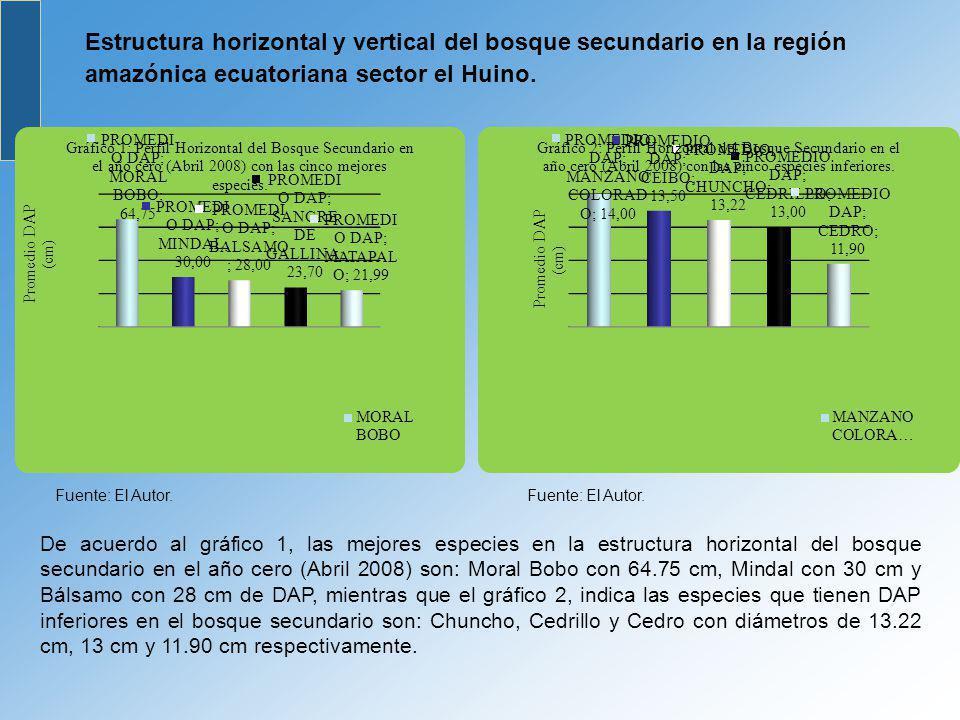 Estructura horizontal y vertical del bosque secundario en la región amazónica ecuatoriana sector el Huino. Fuente: El Autor. De acuerdo al gráfico 1,