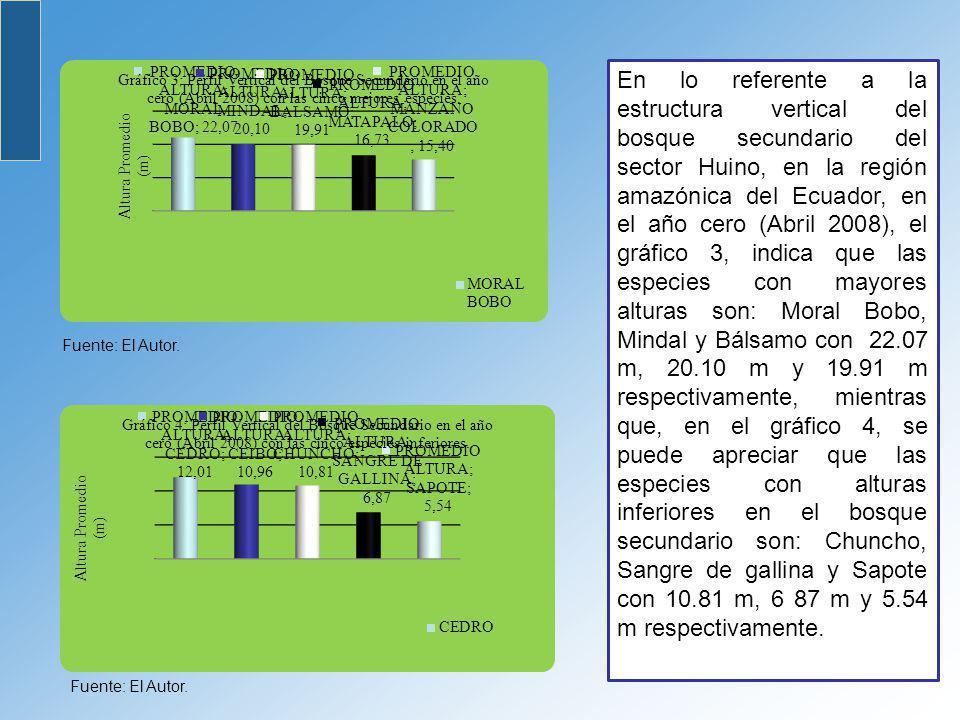 Fuente: El Autor. En lo referente a la estructura vertical del bosque secundario del sector Huino, en la región amazónica del Ecuador, en el año cero