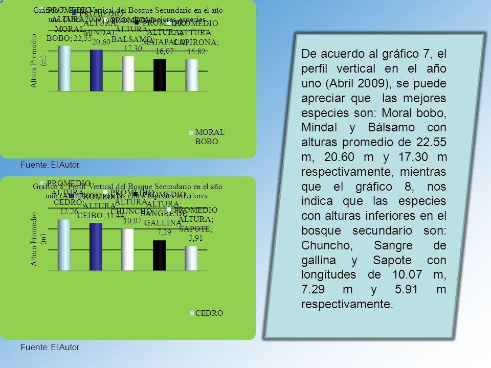 Fuente: El Autor. De acuerdo al gráfico 7, el perfil vertical en el año uno (Abril 2009), se puede apreciar que las mejores especies son: Moral bobo,