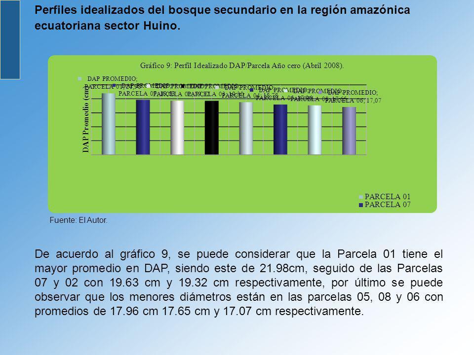 Perfiles idealizados del bosque secundario en la región amazónica ecuatoriana sector Huino. Fuente: El Autor. De acuerdo al gráfico 9, se puede consid