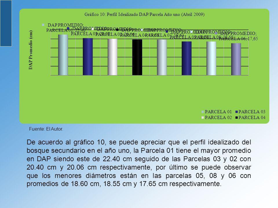 De acuerdo al gráfico 10, se puede apreciar que el perfil idealizado del bosque secundario en el año uno, la Parcela 01 tiene el mayor promedio en DAP