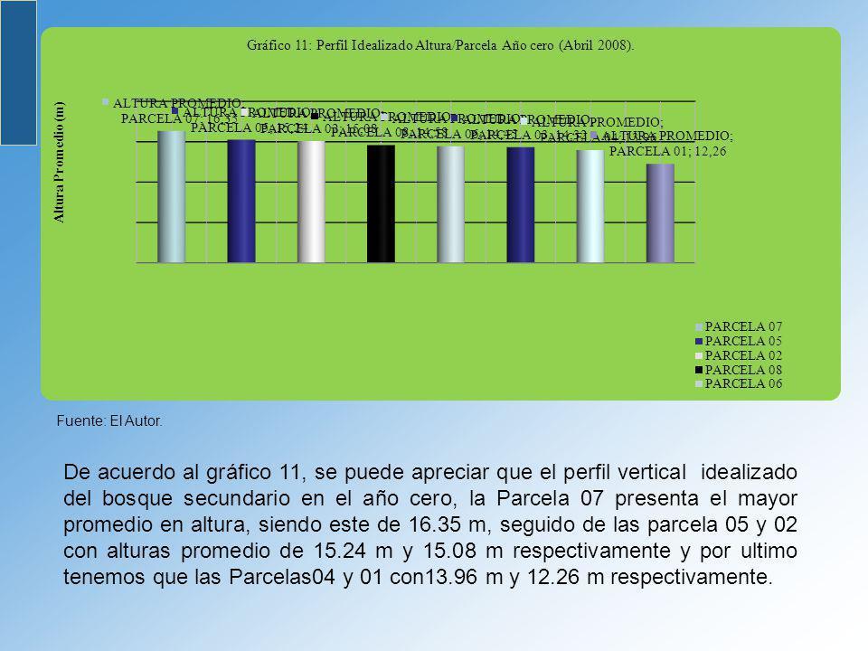 De acuerdo al gráfico 11, se puede apreciar que el perfil vertical idealizado del bosque secundario en el año cero, la Parcela 07 presenta el mayor pr