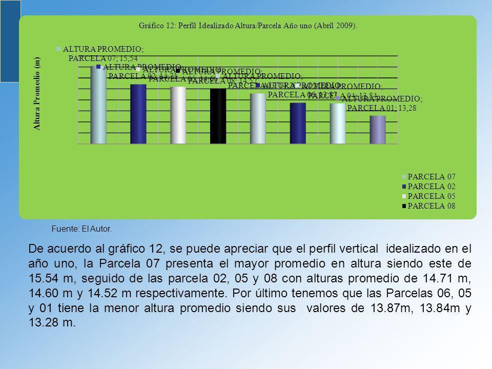 De acuerdo al gráfico 12, se puede apreciar que el perfil vertical idealizado en el año uno, la Parcela 07 presenta el mayor promedio en altura siendo
