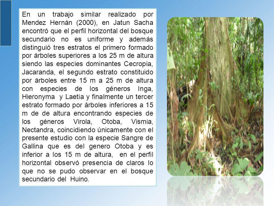 En un trabajo similar realizado por Mendez Hernán (2000), en Jatun Sacha encontró que el perfil horizontal del bosque secundario no es uniforme y adem