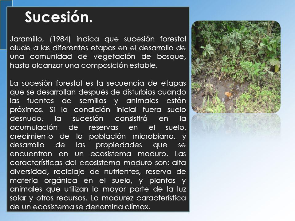 Sucesión. Jaramillo, (1984) indica que sucesión forestal alude a las diferentes etapas en el desarrollo de una comunidad de vegetación de bosque, hast