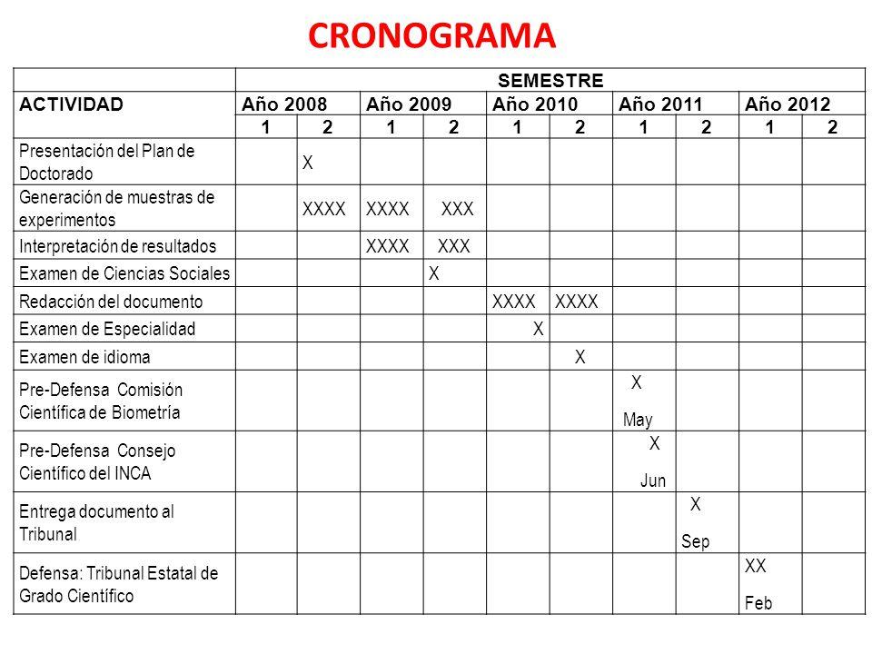 SEMESTRE ACTIVIDADAño 2008Año 2009Año 2010Año 2011Año 2012 1212121212 Presentación del Plan de Doctorado X Generación de muestras de experimentos XXXX