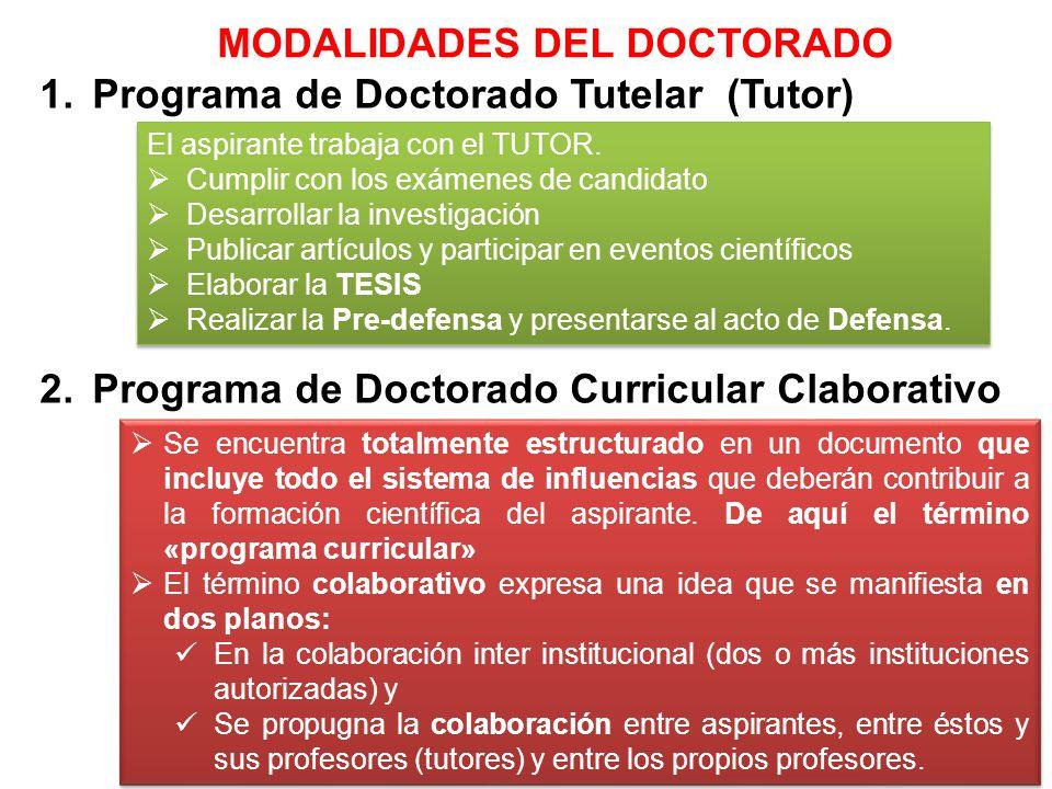 1.Programa de Doctorado Tutelar (Tutor) 2.Programa de Doctorado Curricular Claborativo El aspirante trabaja con el TUTOR. Cumplir con los exámenes de
