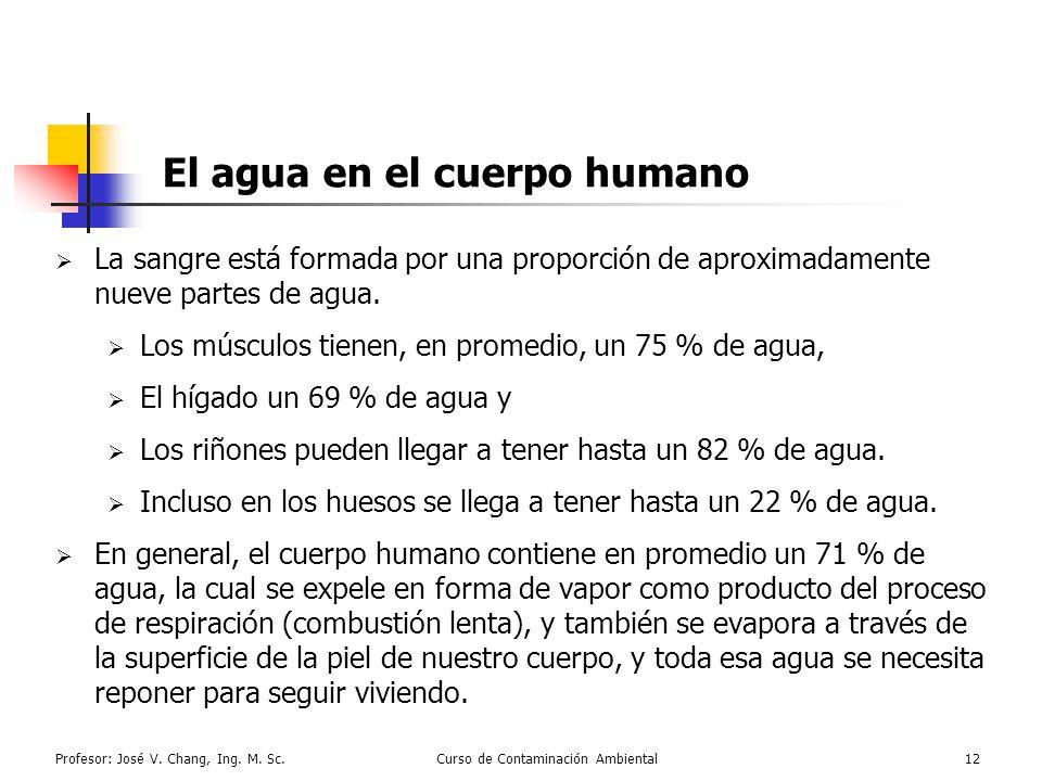 Profesor: José V. Chang, Ing. M. Sc.Curso de Contaminación Ambiental12 El agua en el cuerpo humano La sangre está formada por una proporción de aproxi