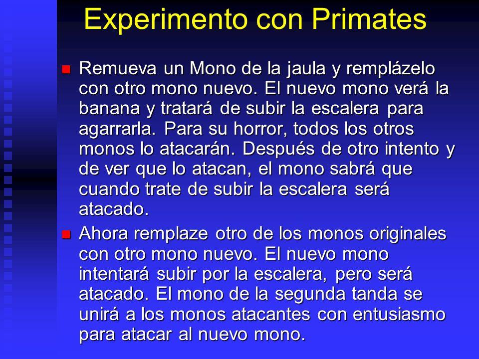 Experimento con Primates Remueva un Mono de la jaula y remplázelo con otro mono nuevo.