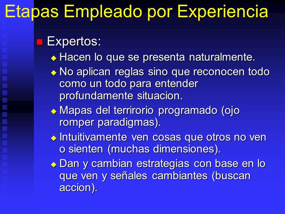 Etapas Empleado por Experiencia Expertos: Expertos: Hacen lo que se presenta naturalmente.