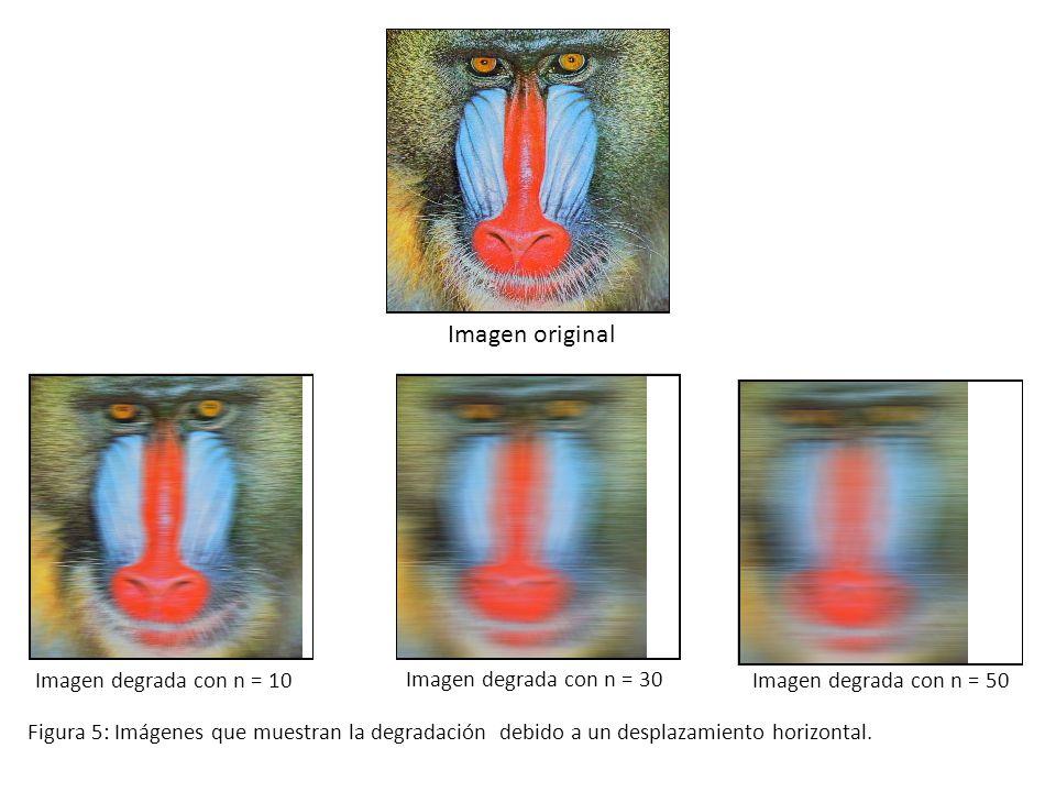 Imagen original Imagen degrada con n = 10 Imagen degrada con n = 30 Imagen degrada con n = 50 Figura 5: Imágenes que muestran la degradación debido a un desplazamiento horizontal.