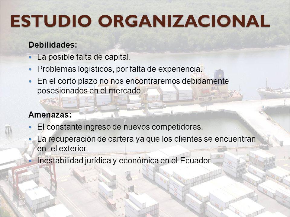 ESTUDIO ORGANIZACIONAL Debilidades: La posible falta de capital. Problemas logísticos, por falta de experiencia. En el corto plazo no nos encontraremo