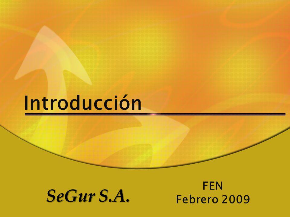 Introducción FEN Febrero 2009 SeGur S.A.