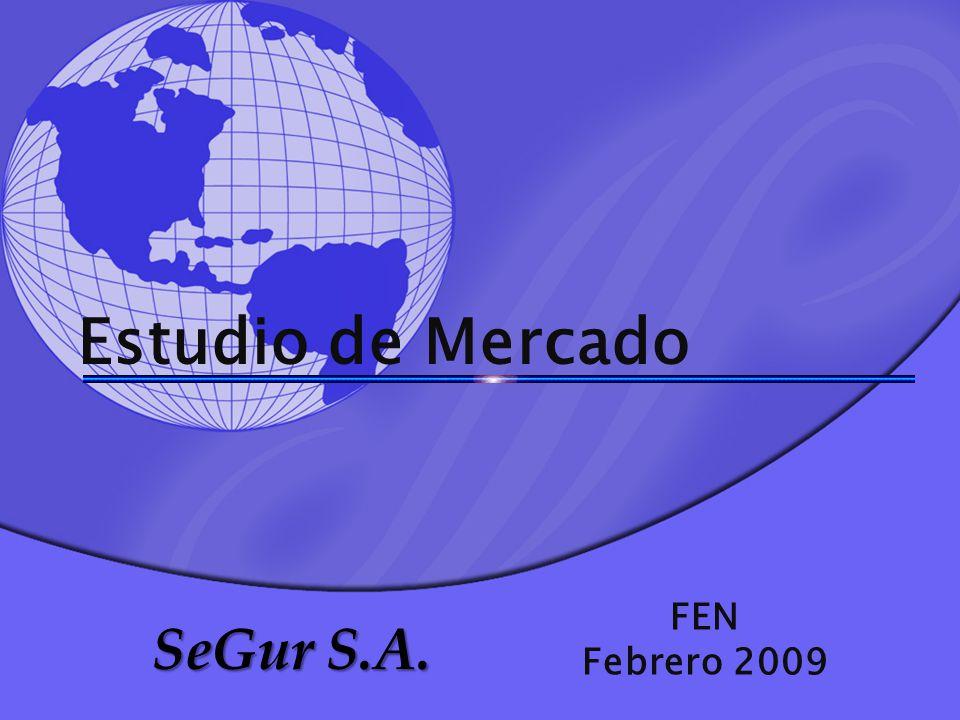 Estudio de Mercado FEN Febrero 2009 SeGur S.A.