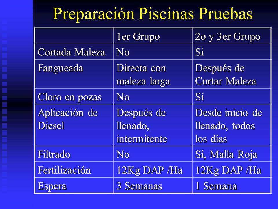 Preparación Piscinas Pruebas 1er Grupo 2o y 3er Grupo Cortada Maleza NoSi Fangueada Directa con maleza larga Después de Cortar Maleza Cloro en pozas N