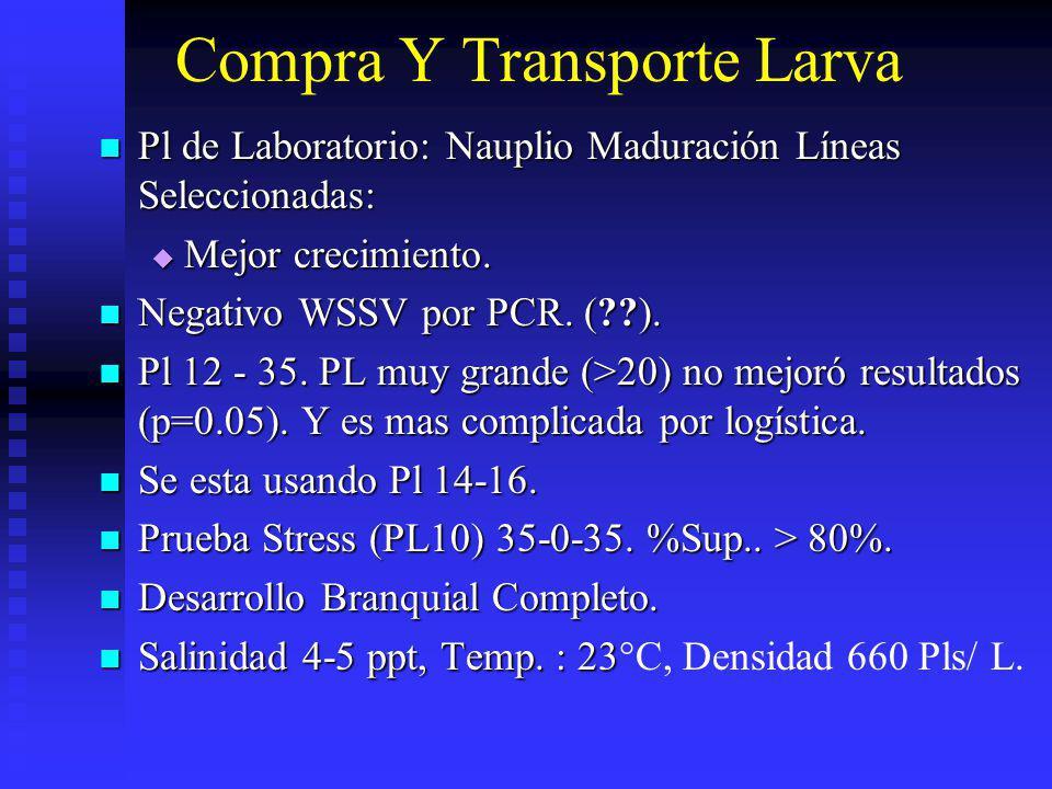 Compra Y Transporte Larva Pl de Laboratorio: Nauplio Maduración Líneas Seleccionadas: Pl de Laboratorio: Nauplio Maduración Líneas Seleccionadas: Mejo