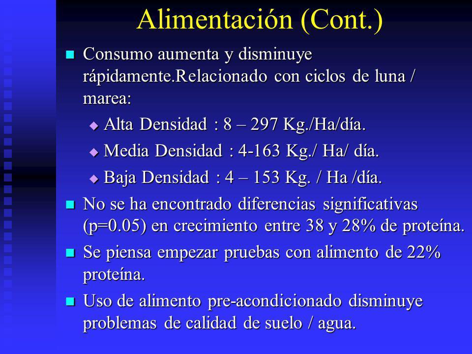 Alimentación (Cont.) Consumo aumenta y disminuye rápidamente.Relacionado con ciclos de luna / marea: Consumo aumenta y disminuye rápidamente.Relaciona