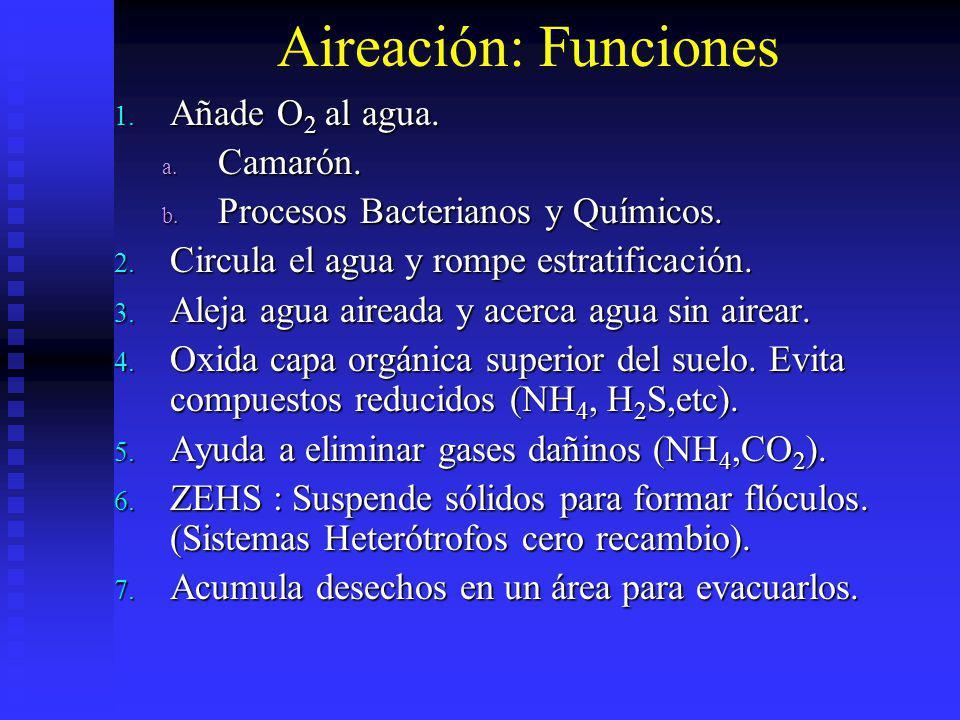 Aireación: Funciones 1. Añade O 2 al agua. a. Camarón. b. Procesos Bacterianos y Químicos. 2. Circula el agua y rompe estratificación. 3. Aleja agua a
