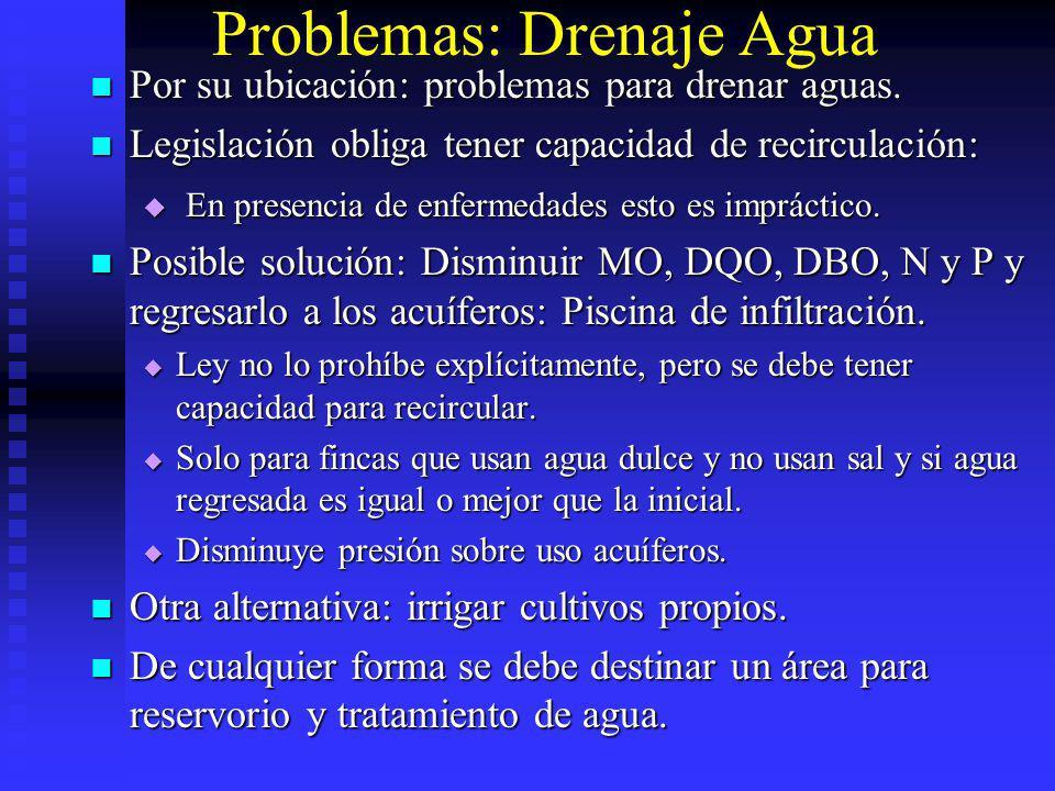 Problemas: Drenaje Agua Por su ubicación: problemas para drenar aguas. Por su ubicación: problemas para drenar aguas. Legislación obliga tener capacid