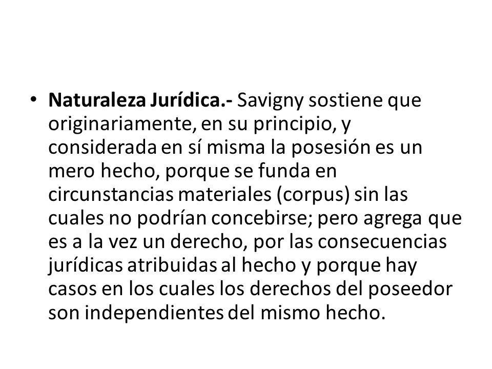 Naturaleza Jurídica.- Savigny sostiene que originariamente, en su principio, y considerada en sí misma la posesión es un mero hecho, porque se funda e