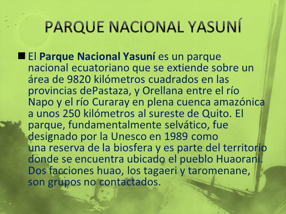 El Parque Nacional Yasuní es un parque nacional ecuatoriano que se extiende sobre un área de 9820 kilómetros cuadrados en las provincias dePastaza, y