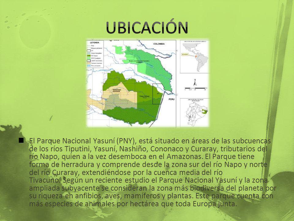 El Parque Nacional Yasuní (PNY), está situado en áreas de las subcuencas de los ríos Tiputini, Yasuní, Nashiño, Cononaco y Curaray, tributarios del rí