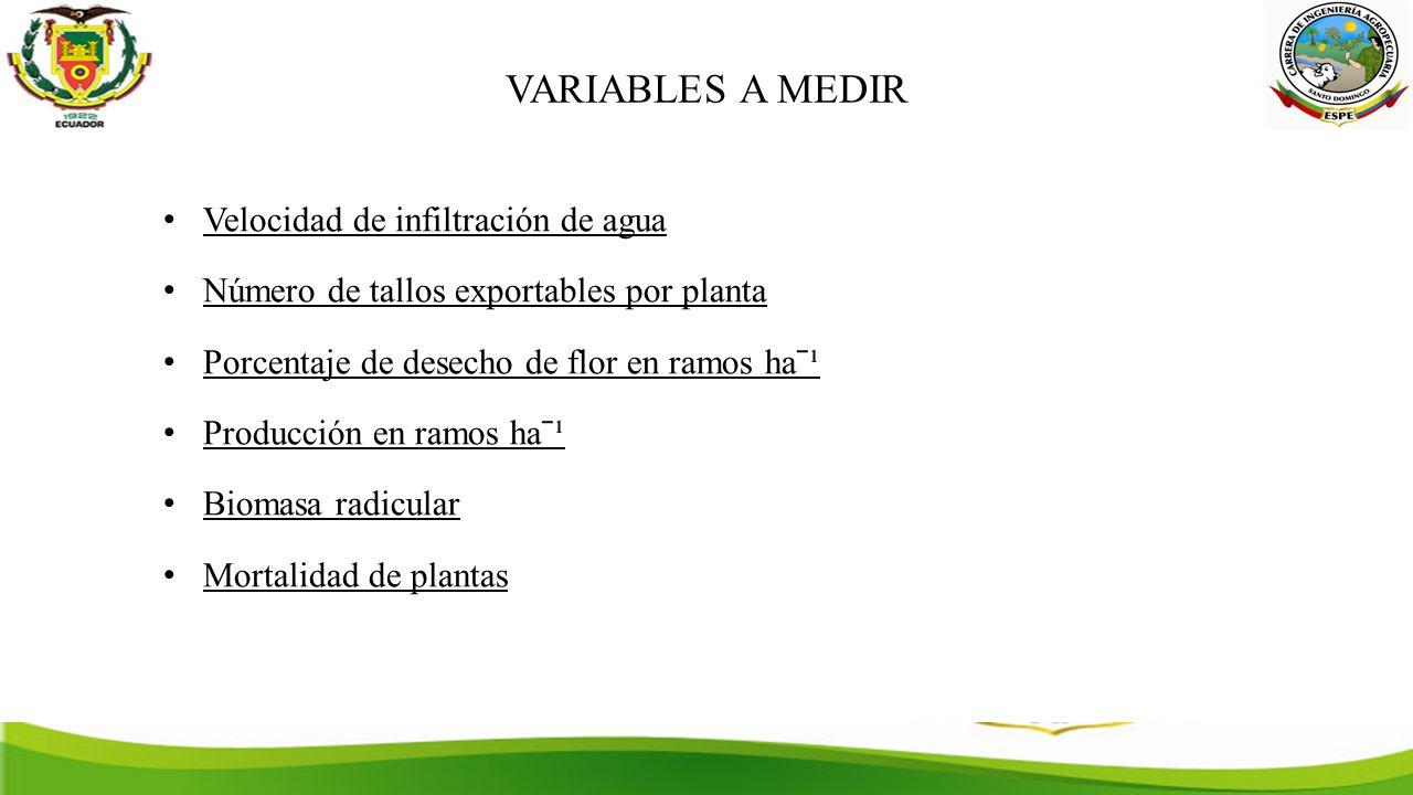 VARIABLES A MEDIR Velocidad de infiltración de agua Número de tallos exportables por planta Porcentaje de desecho de flor en ramos haˉ¹ Producción en ramos haˉ¹ Biomasa radicular Mortalidad de plantas