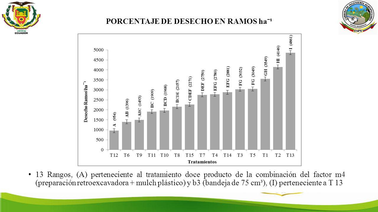 PORCENTAJE DE DESECHO EN RAMOS haˉ¹ 13 Rangos, (A) perteneciente al tratamiento doce producto de la combinación del factor m4 (preparación retroexcavadora + mulch plástico) y b3 (bandeja de 75 cm³), (I) perteneciente a T 13