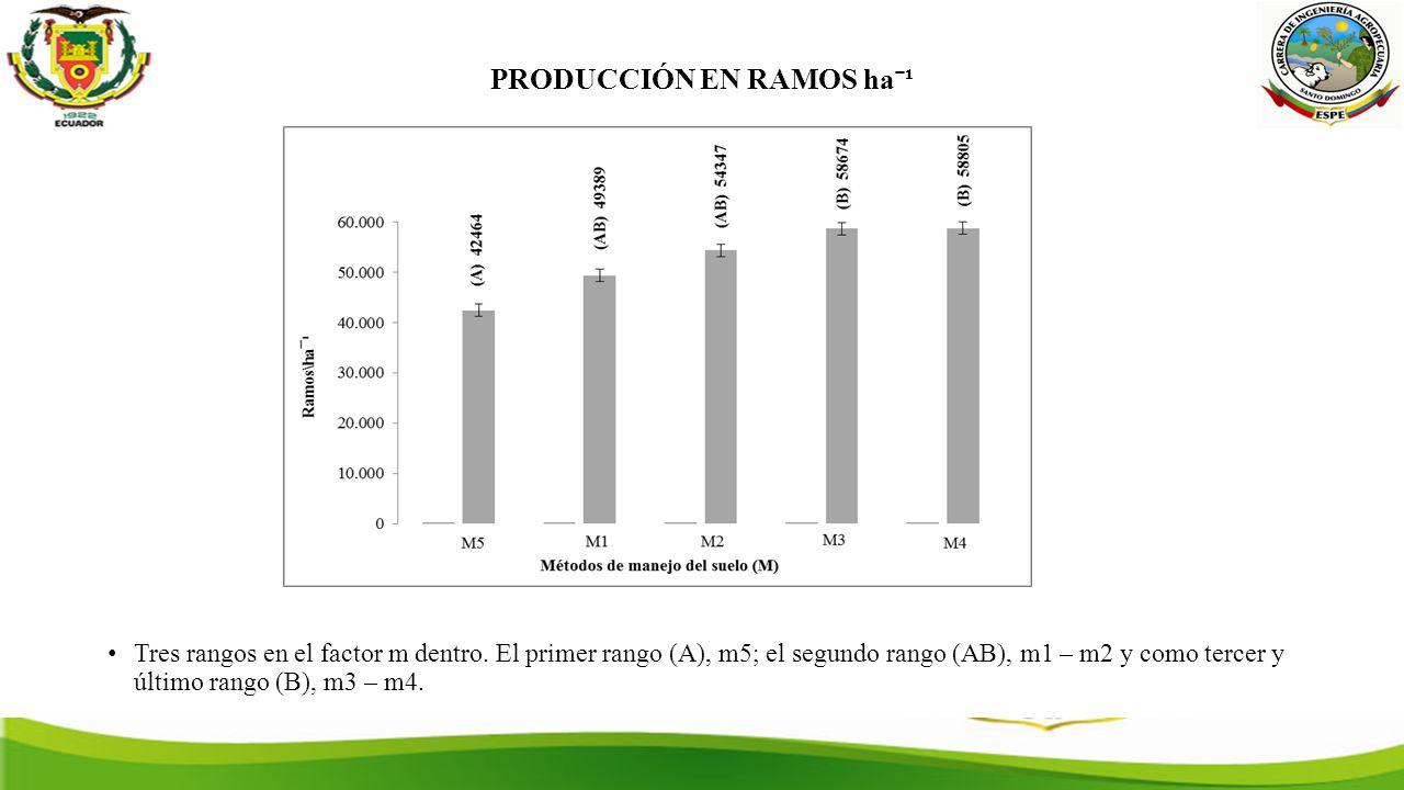 PRODUCCIÓN EN RAMOS haˉ¹ Tres rangos en el factor m dentro.