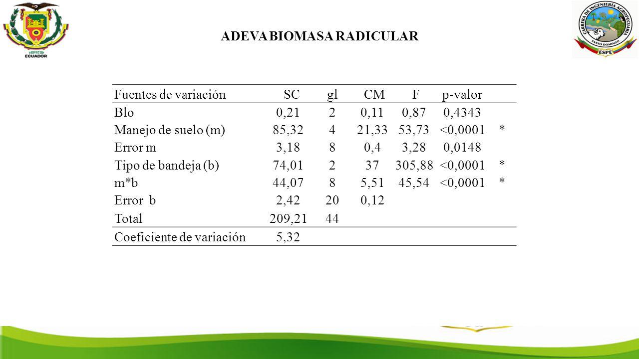ADEVA BIOMASA RADICULAR Fuentes de variación SCgl CM Fp-valor Blo0,2120,110,870,4343 Manejo de suelo (m)85,32421,3353,73<0,0001* Error m3,1880,43,280,0148 Tipo de bandeja (b)74,01237305,88<0,0001* m*b44,0785,5145,54<0,0001* Error b2,42200,12 Total209,2144 Coeficiente de variación5,32