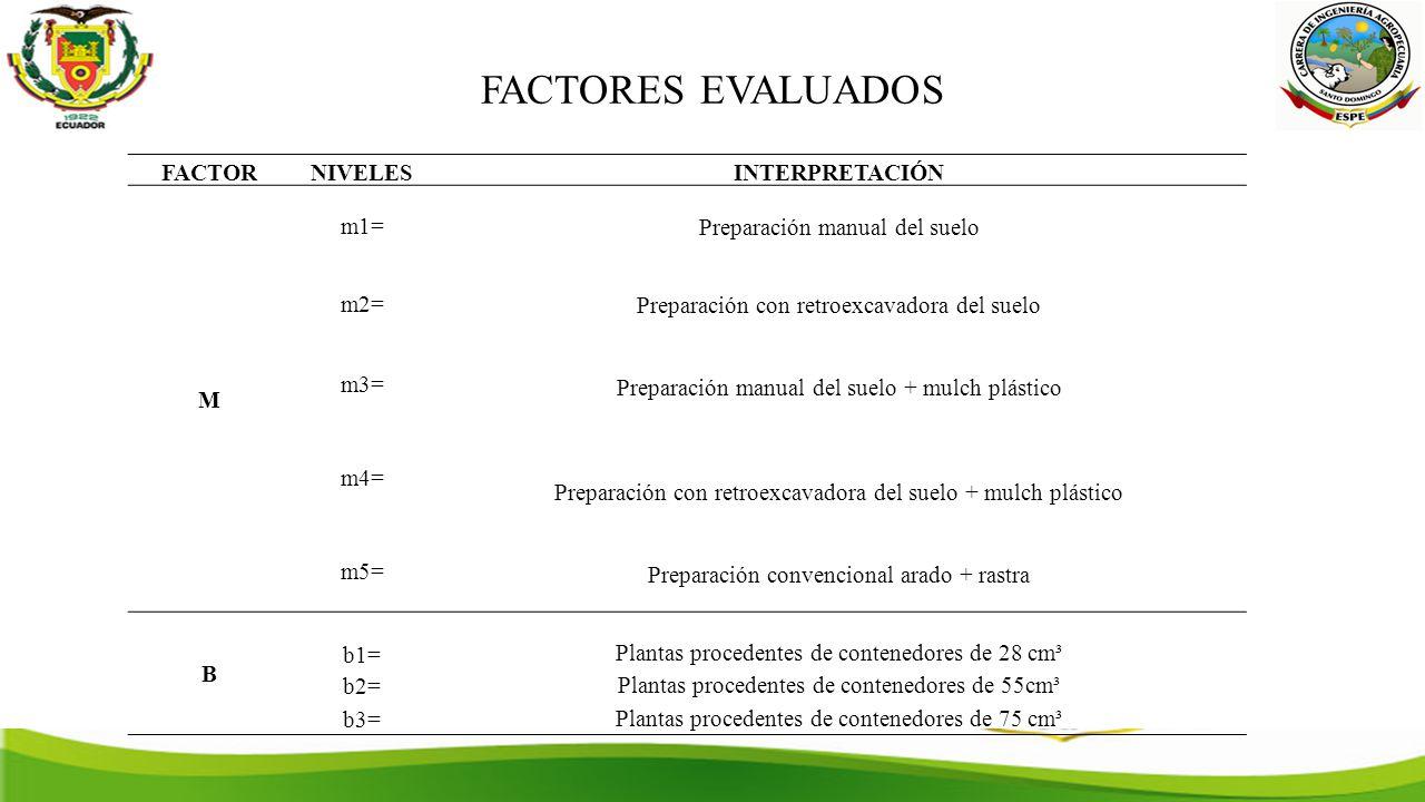 FACTORES EVALUADOS FACTORNIVELESINTERPRETACIÓN M m1= Preparación manual del suelo m2= Preparación con retroexcavadora del suelo m3= Preparación manual del suelo + mulch plástico m4= Preparación con retroexcavadora del suelo + mulch plástico m5= Preparación convencional arado + rastra B b1= Plantas procedentes de contenedores de 28 cm³ b2= Plantas procedentes de contenedores de 55cm³ b3= Plantas procedentes de contenedores de 75 cm³