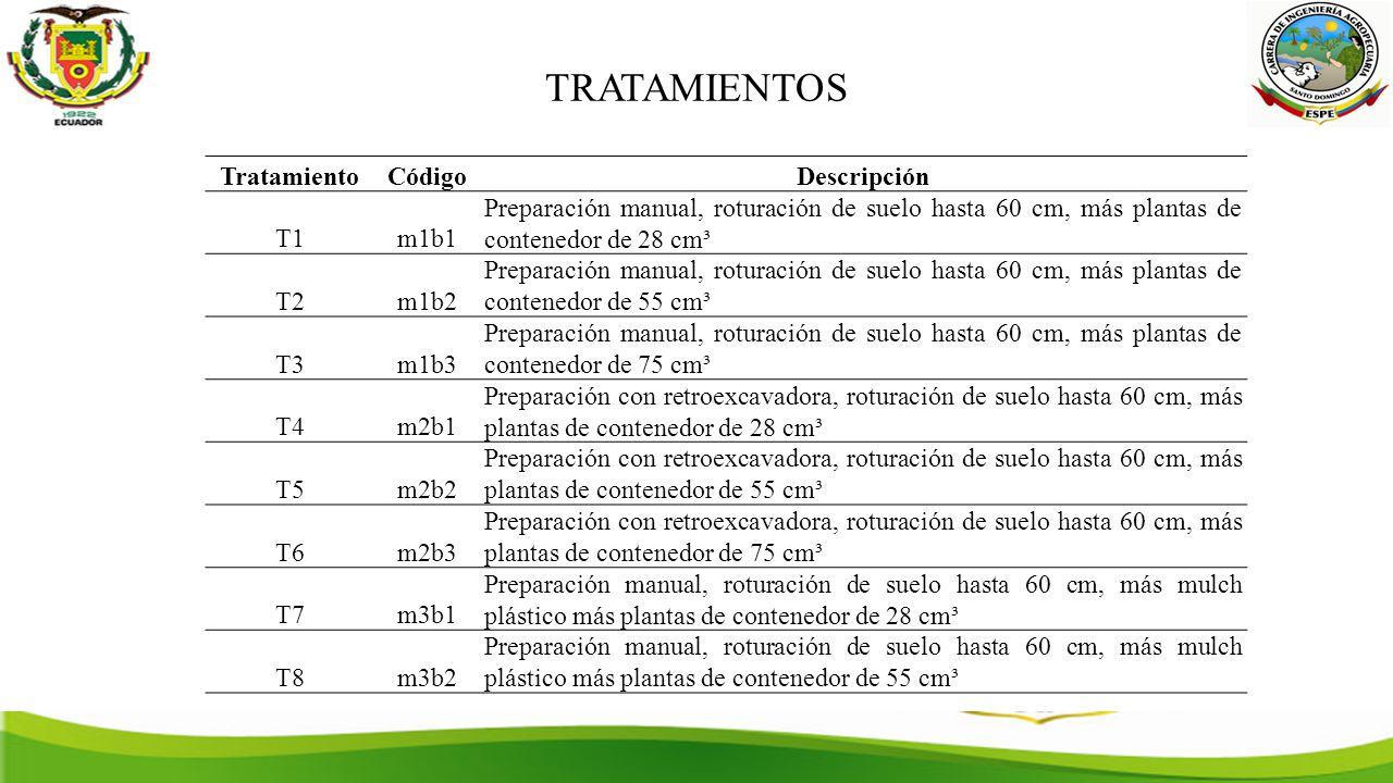 TRATAMIENTOS TratamientoCódigoDescripción T1m1b1 Preparación manual, roturación de suelo hasta 60 cm, más plantas de contenedor de 28 cm³ T2m1b2 Preparación manual, roturación de suelo hasta 60 cm, más plantas de contenedor de 55 cm³ T3m1b3 Preparación manual, roturación de suelo hasta 60 cm, más plantas de contenedor de 75 cm³ T4m2b1 Preparación con retroexcavadora, roturación de suelo hasta 60 cm, más plantas de contenedor de 28 cm³ T5m2b2 Preparación con retroexcavadora, roturación de suelo hasta 60 cm, más plantas de contenedor de 55 cm³ T6m2b3 Preparación con retroexcavadora, roturación de suelo hasta 60 cm, más plantas de contenedor de 75 cm³ T7m3b1 Preparación manual, roturación de suelo hasta 60 cm, más mulch plástico más plantas de contenedor de 28 cm³ T8m3b2 Preparación manual, roturación de suelo hasta 60 cm, más mulch plástico más plantas de contenedor de 55 cm³