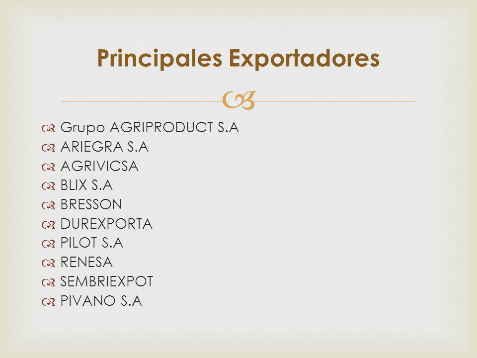 Grupo AGRIPRODUCT S.A ARIEGRA S.A AGRIVICSA BLIX S.A BRESSON DUREXPORTA PILOT S.A RENESA SEMBRIEXPOT PIVANO S.A Principales Exportadores